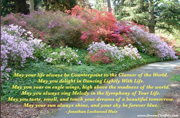 ... great peace and comfort in these Life is Beautiful quotes and sayings